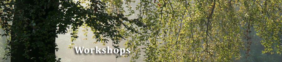 header-workshops.jpg